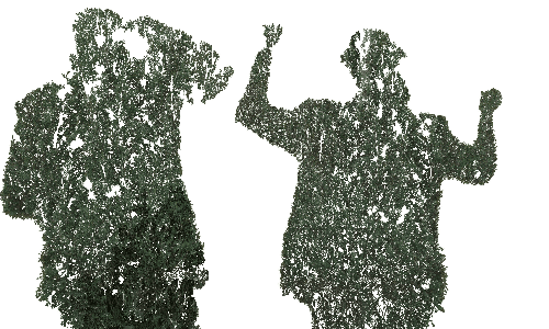 tree man transparency_1579127744.png